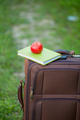 apple with a book suitcase