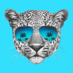 Original drawing of leopard with mirror sunglasses. Isolated on colored background