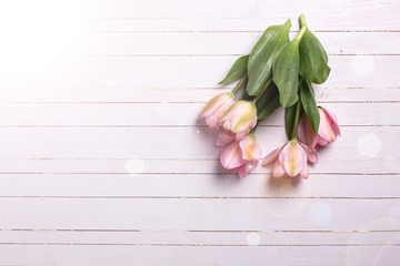 Background with fresh pink  tulip flowers