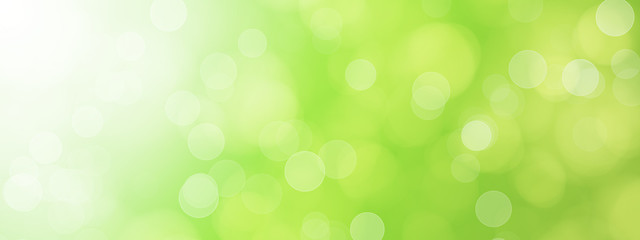 green blurred bokeh background illustration Wall mural