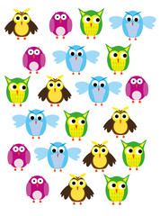 patterned background with owls
