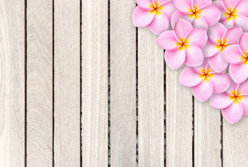 Pink frangipani flower on grey wooden plank background