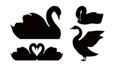 Beautiful Swan Silhouette