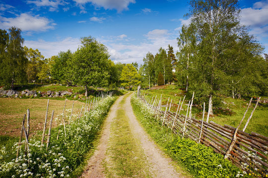 small country-road surrounded by flowers and forest, Sweden