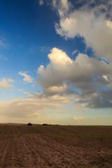 Morning clouds above dark field