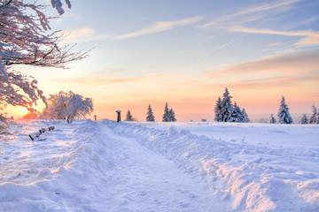 Winterwanderweg auf dem Kahlen Asten