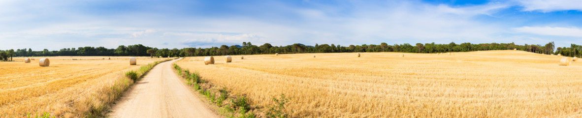 Straw field panorama Wall mural
