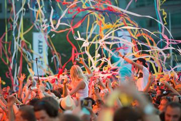 Crowd going wild on Dutch EDM Festival