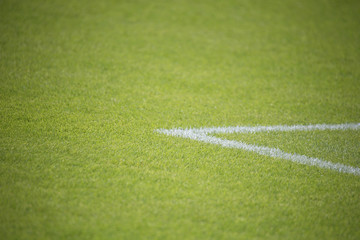 Fußballplatz - Naturrasen in einem Stadion