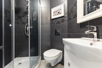Black tiles in contemporary toilet