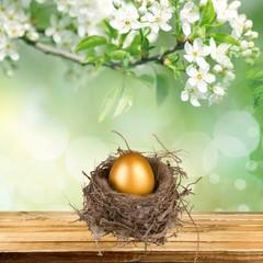 Nest Egg, Eggs, Animal Nest.
