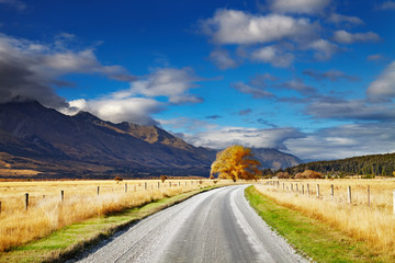 Wall Mural - New Zealand landscape, South Island