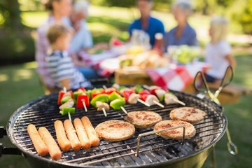 Family doing barbecue in the park