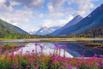 Alaska mountain range and reflecting lake on the Kenai peninsula Wall mural