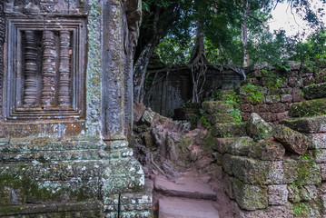 Printed roller blinds Garden blind window with bas-reliefs in the shape of columns and to the fund, ficus on laterite wall in the archaeological ta prohm place in siam reap, cambodia