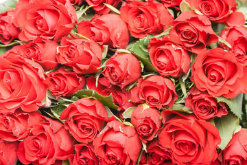 bouquet of red roses for romantic gift background