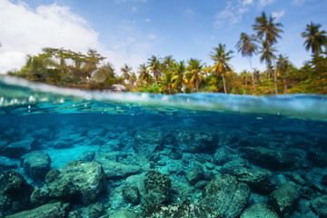 Foto op Aluminium Onder water Underwater split shot of the sea rocky bottom