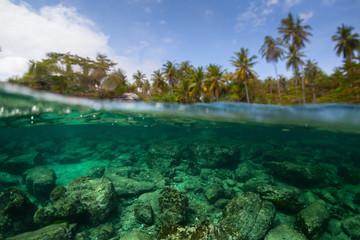 Fototapete - Underwater split shot of the sea rocky bottom