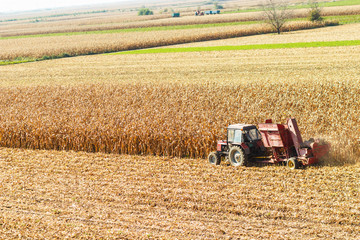 Old-Fashioned tractor harvesting corn corp.