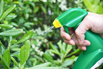 Using a spray in the garden, close-up