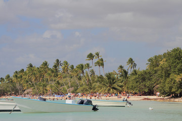 Motor boats and tropical coast. Bayahibe, Dominican Republic