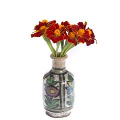 Tagetus in vintage vase isolated on white background