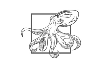 Octopus in deep. Template for logo, label and emblem with octopus silhouette. Original close up vector illustration of hand drawn octopus. Retro style sketch