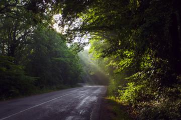 Sunrise on the Crimean road. Crimea.