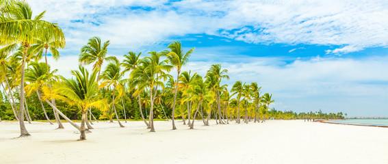 Foto op Plexiglas Caraïben Cap Cana beach , Dominican Republic