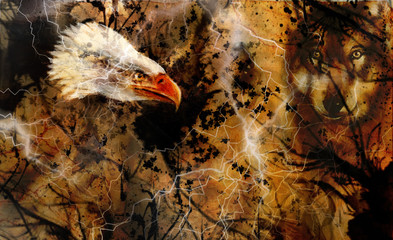 Wolf and eagle color painting, feathers background, multicolor