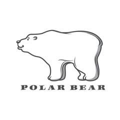 White polar bear  for  logo design
