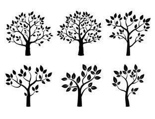 Set of lack vector trees with leafs
