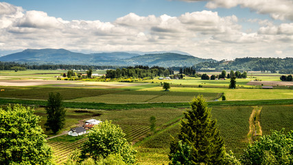 The fertile farming area of Glenn Valley in the Fraser Valley of British Columbia