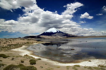 Lauca National Park, Chile, South America Volcano Parinacota and Lake Chungara in Chile's Andean range