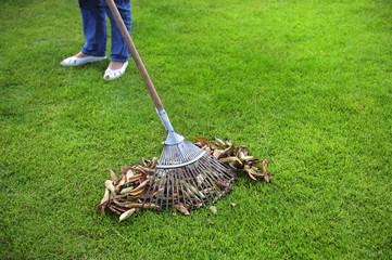 Gartenarbeit - Laub mit dem Rechen zusammenfegen