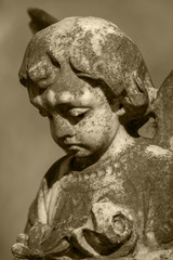 Stone Cherub with a sad expression