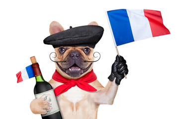 Wall Mural - french wine dog