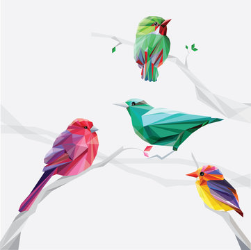 low polygon style colorful birds on tree branches set collection