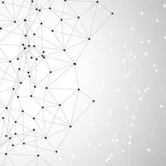 Vector Social Networks
