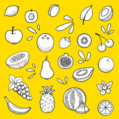 fruit set, hand drawn