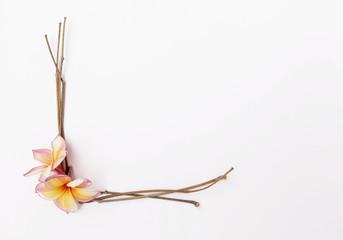 Fresh flower and dry branch frame