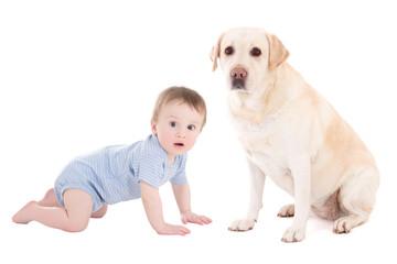 funny baby boy and beautiful dog golden retriever sitting isolat