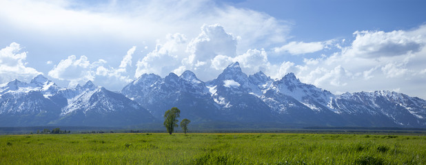 Panorama of Grand Teton mountain range in Wyoming