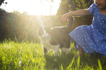 Little girl with cat on a meadow at backlight