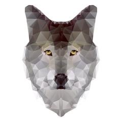 Wolf triangle