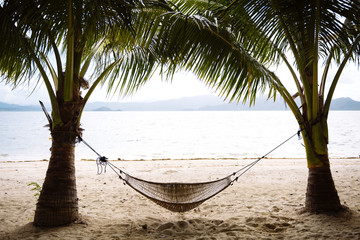 Philippines, Palawan, hammock and palms on a beach near El Nido