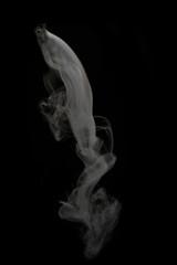 Foto op Aluminium Vissen ドライアイスの煙り