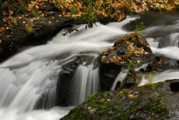 Small falls Near Tumwater Falls, Washington.