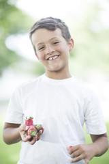 Portrait of boy holding strawberries