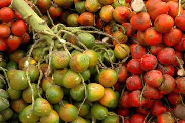 pejibaye at outdoor market